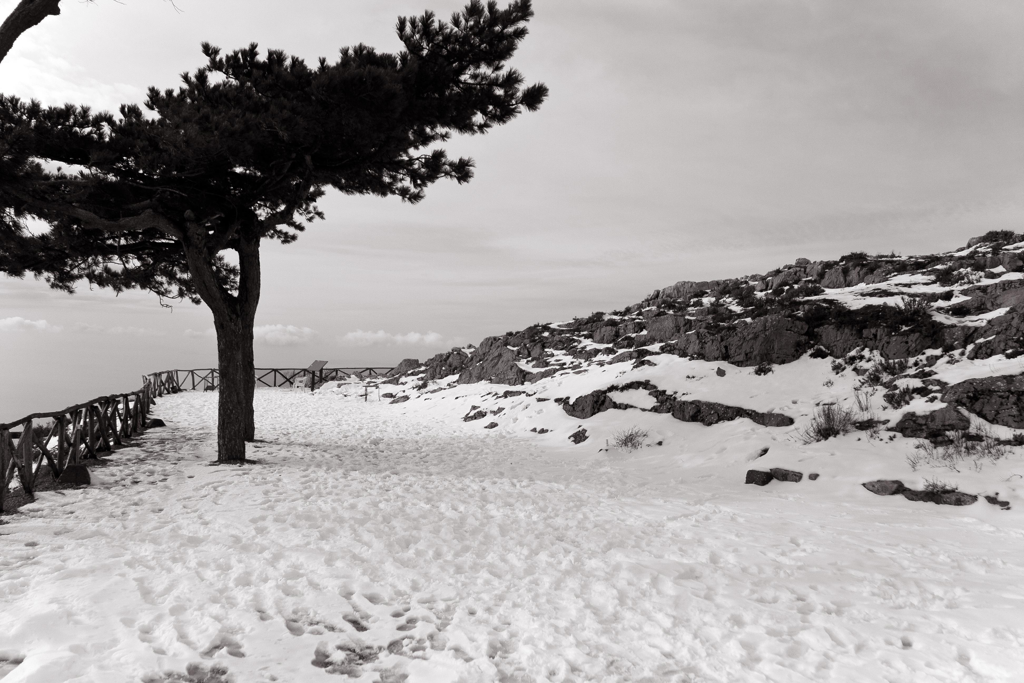 Neve sul Faito