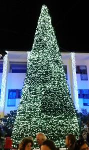Accensione dell'albero di Natale