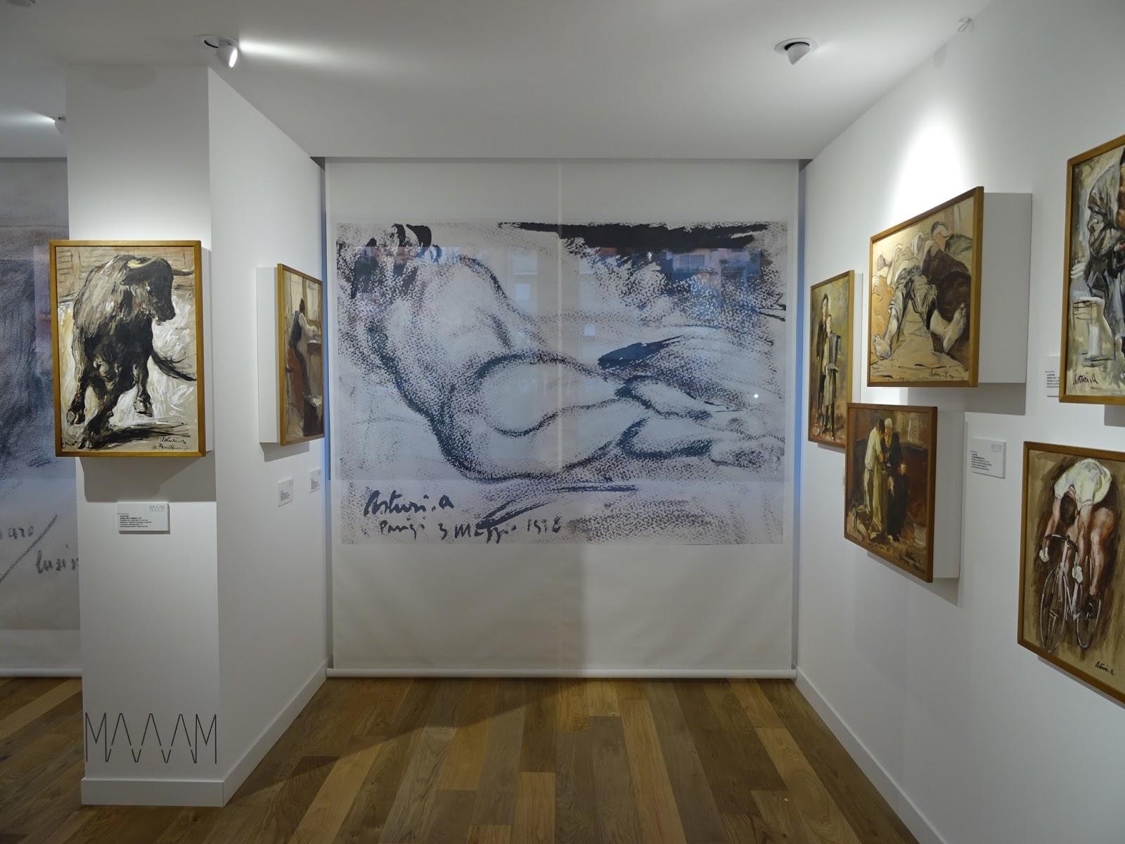 Museo Asturi